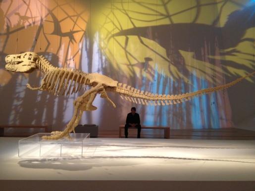 NathanSawaya_DinosaurSkeleton